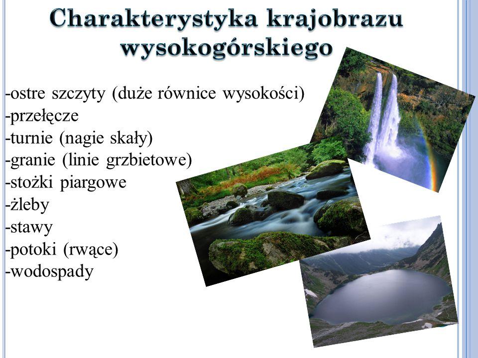 -ostre szczyty (duże równice wysokości) -przełęcze -turnie (nagie skały) -granie (linie grzbietowe) -stożki piargowe -żleby -stawy -potoki (rwące) -wodospady