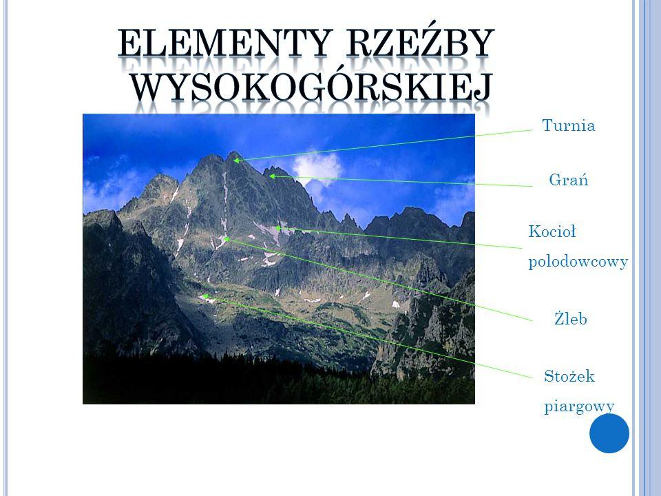 Góry Zrębowe Powstanie pasm i łańcuchów górskich jest rezultatem ruchów tektonicznych.