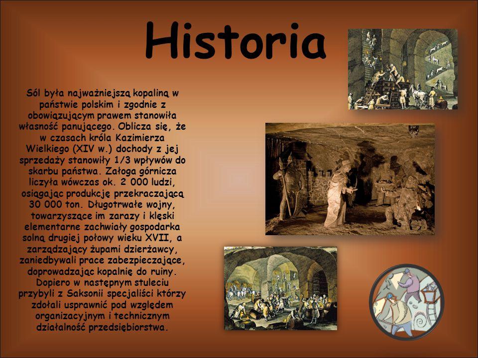 Historia Sól była najważniejszą kopaliną w państwie polskim i zgodnie z obowiązującym prawem stanowiła własność panującego. Oblicza się, że w czasach