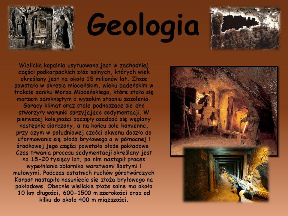 Geologia Wielicka kopalnia usytuowana jest w zachodniej części podkarpackich złóż solnych, których wiek określany jest na około 15 milionów lat. Złoże