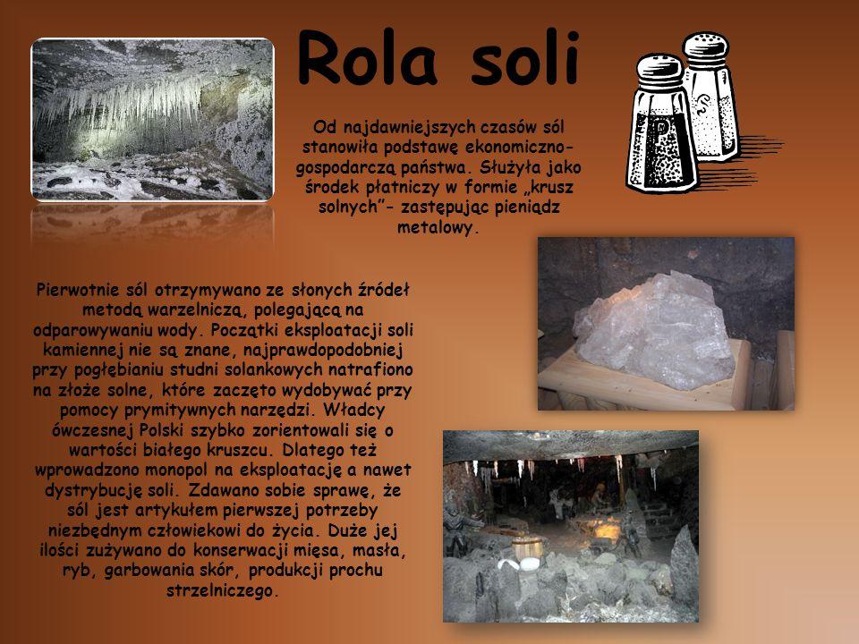 """Od najdawniejszych czasów sól stanowiła podstawę ekonomiczno- gospodarczą państwa. Służyła jako środek płatniczy w formie """"krusz solnych""""- zastępując"""