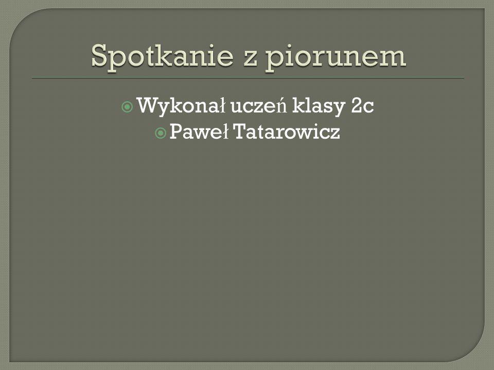  Wykona ł ucze ń klasy 2c  Pawe ł Tatarowicz
