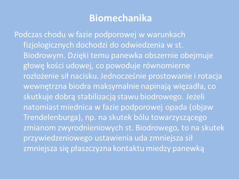 Biomechanika Podczas chodu w fazie podporowej w warunkach fizjologicznych dochodzi do odwiedzenia w st. Biodrowym. Dzięki temu panewka obszernie obejm