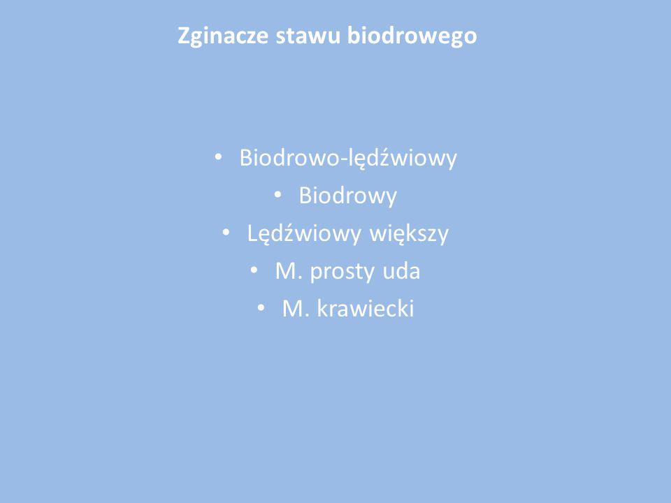 Schorzenia błony maziowej: zapalenia stawów (nieinfekcyjne), chrzęstniakowatość,kosmkowo- guzkowe barwnikowe zapalenie błony maziowej Konflikt (impingement) udowo-panewkowy opisany przez Ganza Nieurazowa niestabilność stawu biodrowego: wiotkość torebki stawowej z niewydolnością więzadła biodrowo-udowego