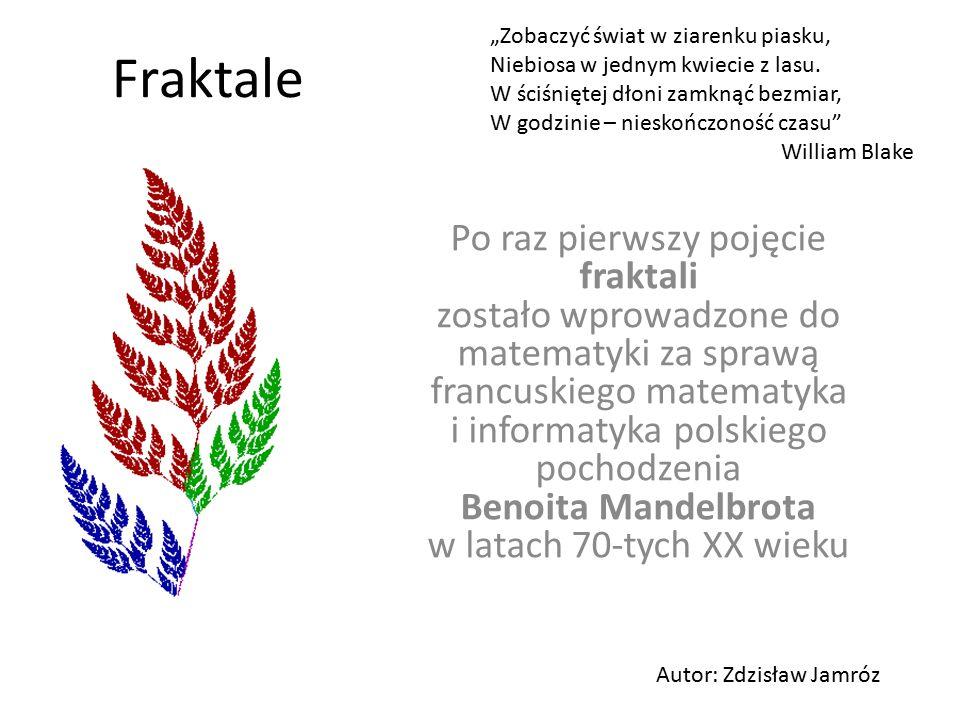 Fraktale Po raz pierwszy pojęcie fraktali zostało wprowadzone do matematyki za sprawą francuskiego matematyka i informatyka polskiego pochodzenia Beno