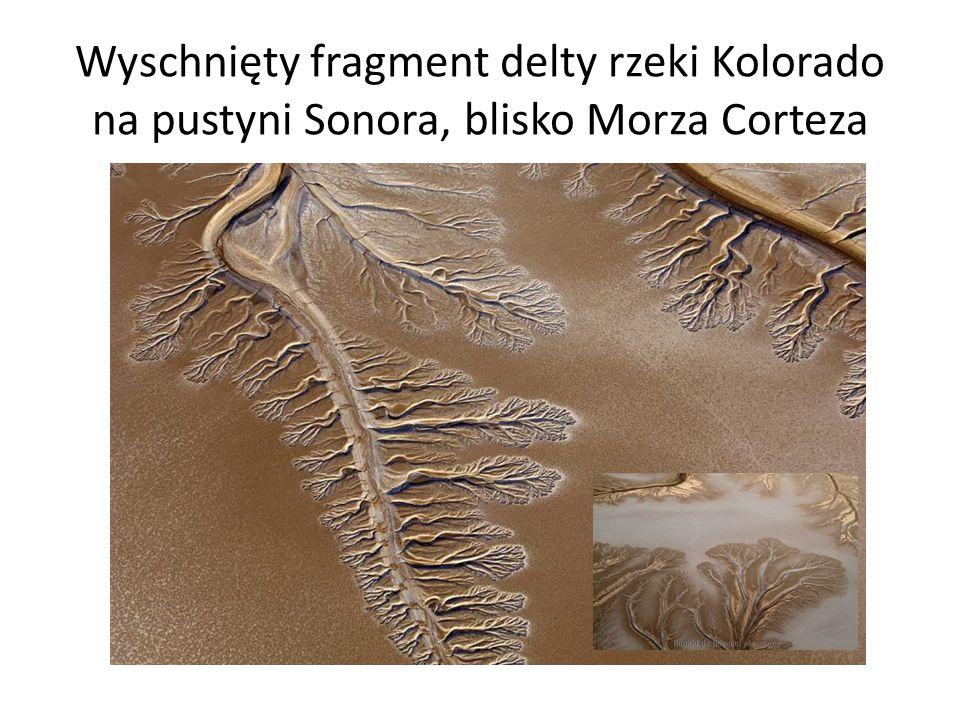 Wyschnięty fragment delty rzeki Kolorado na pustyni Sonora, blisko Morza Corteza