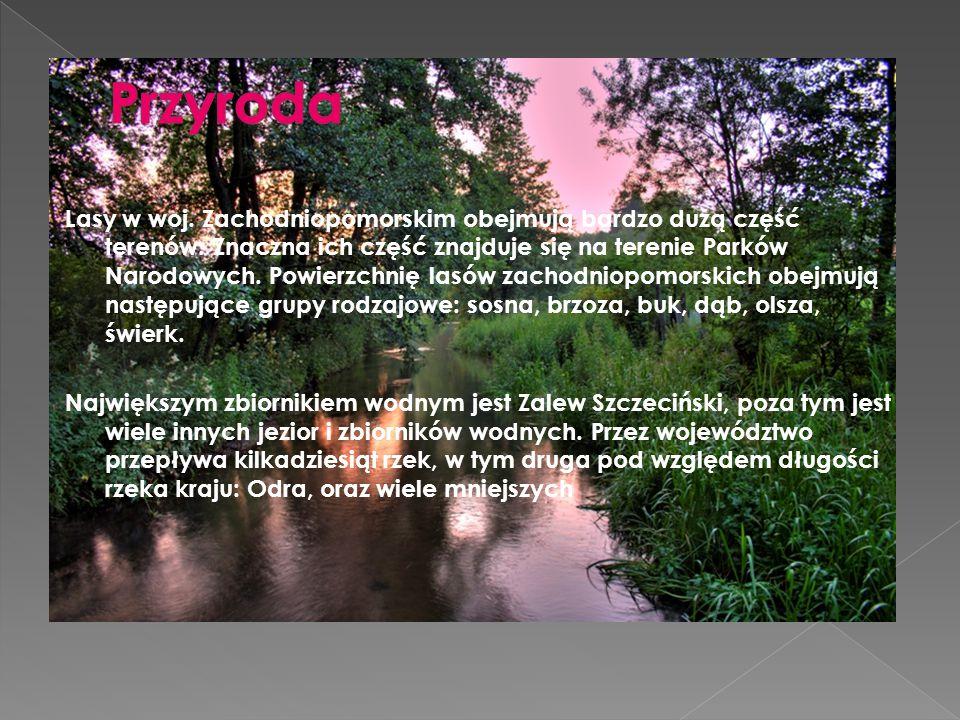 W zachodniopomorskim są 2 parki narodowe: Woliński, oraz w połowie Drawieński, a także 7 parków krajobrazowych.