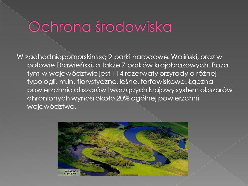 Woliński Park Narodowy – polski park narodowy w woj.