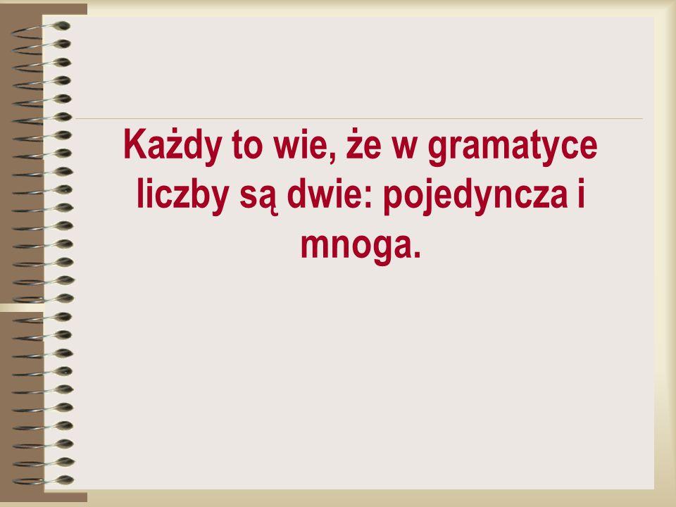 Każdy to wie, że w gramatyce liczby są dwie: pojedyncza i mnoga.