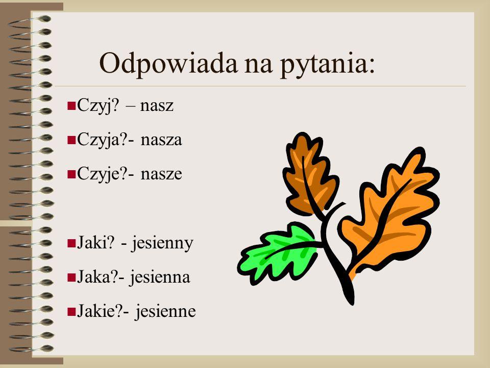 Odpowiada na pytania: Czyj? – nasz Czyja?- nasza Czyje?- nasze Jaki? - jesienny Jaka?- jesienna Jakie?- jesienne