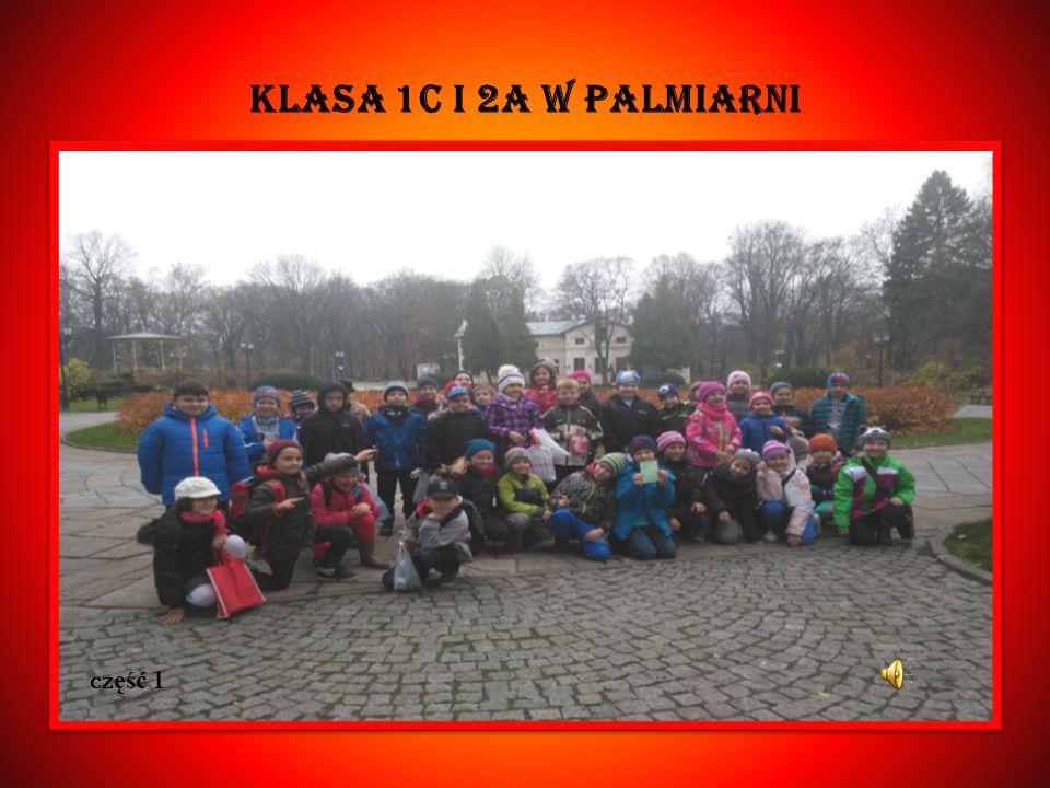 KLASA 1C I 2A W Palmiarni cz ęść 1