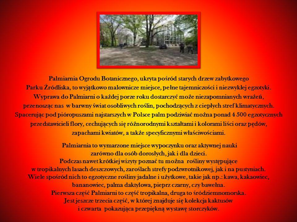Palmiarnia Ogrodu Botanicznego, ukryta po ś ród starych drzew zabytkowego Parku Ź ródliska, to wyj ą tkowo malownicze miejsce, pe ł ne tajemniczo ś ci i niezwyk ł ej egzotyki.