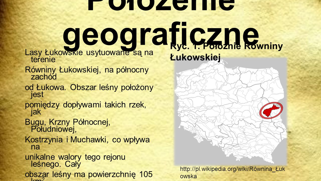 Położenie geograficzne Lasy Łukowskie usytuowane są na terenie Równiny Łukowskiej, na północny zachód od Łukowa. Obszar leśny położony jest pomiędzy d