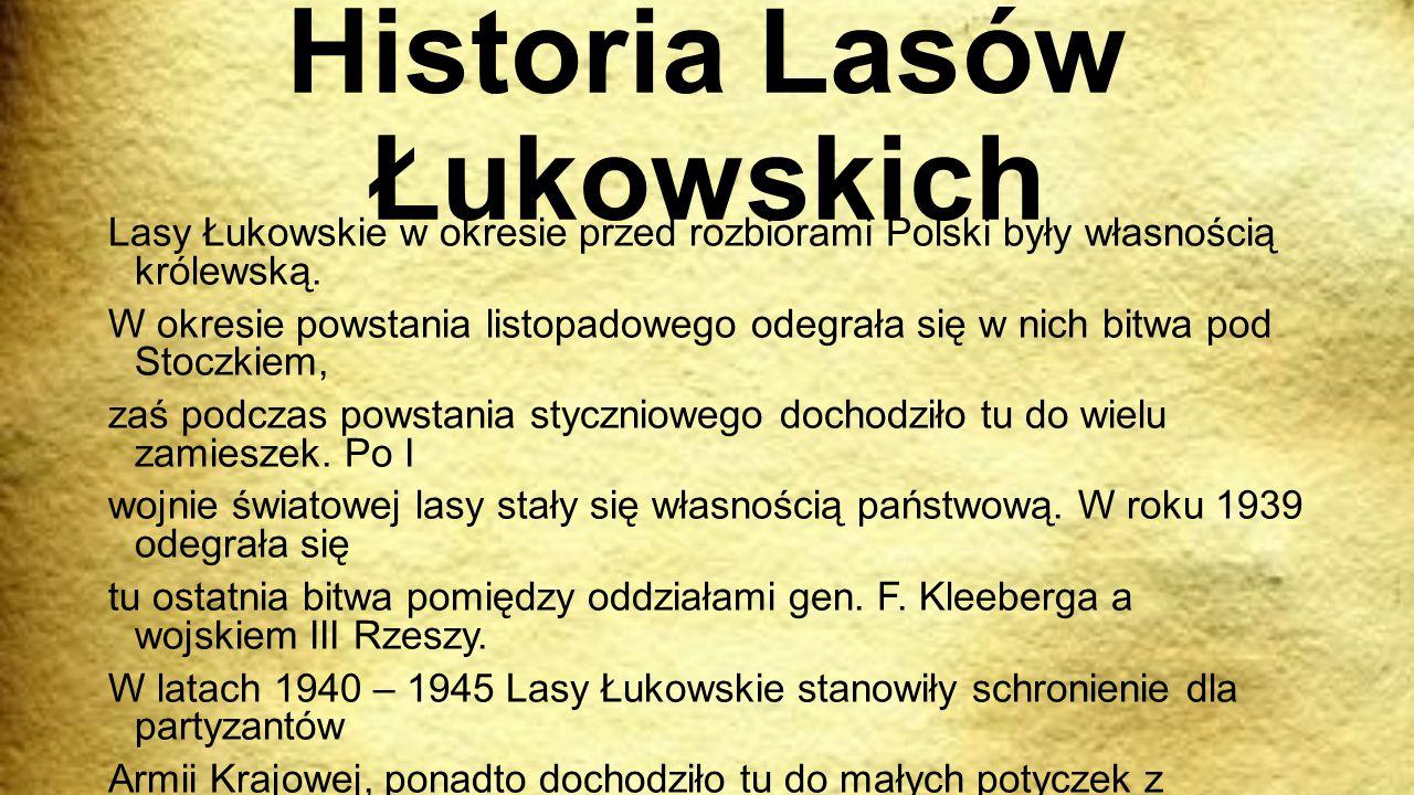 Historia Lasów Łukowskich Lasy Łukowskie w okresie przed rozbiorami Polski były własnością królewską. W okresie powstania listopadowego odegrała się w
