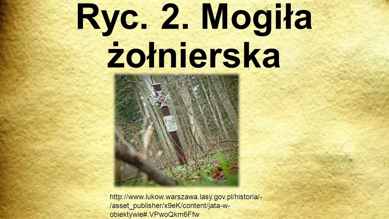 Ryc. 2. Mogiła żołnierska http://www.lukow.warszawa.lasy.gov.pl/historia/- /asset_publisher/x9eK/content/jata-w- obiektywie#.VPwoQkm6Ffw