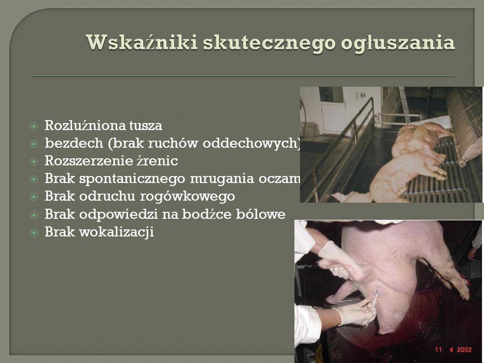  Rozlu ź niona tusza  bezdech (brak ruchów oddechowych)  Rozszerzenie ź renic  Brak spontanicznego mrugania oczami  Brak odruchu rogówkowego  Brak odpowiedzi na bod ź ce bólowe  Brak wokalizacji