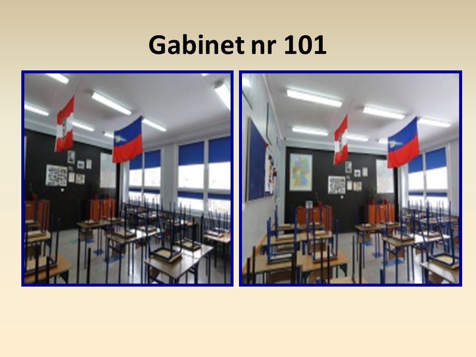 Remonty sal lekcyjnych: nr 219