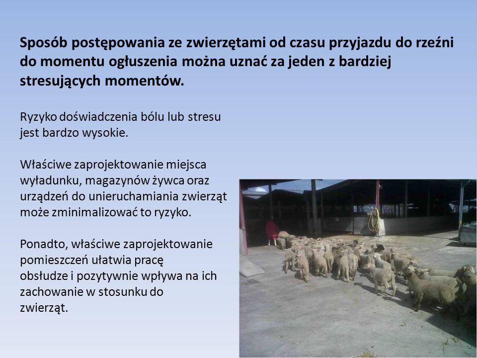 Właściwe zaprojektowanie pomieszczeń stworzenie właściwych warunków zapewniających zwierzętom komfort; umożliwienie takiego obchodzenie się ze zwierzętami aby unikać niepotrzebnego strachu i bólu; umożliwienie obserwacji zwierząt, w szczególności wykrycie nieprawidłowości mogących powodować cierpienie; zapewnienie bezpieczeństwa personelu co jednocześnie wpływa na właściwe traktowanie zwierząt.