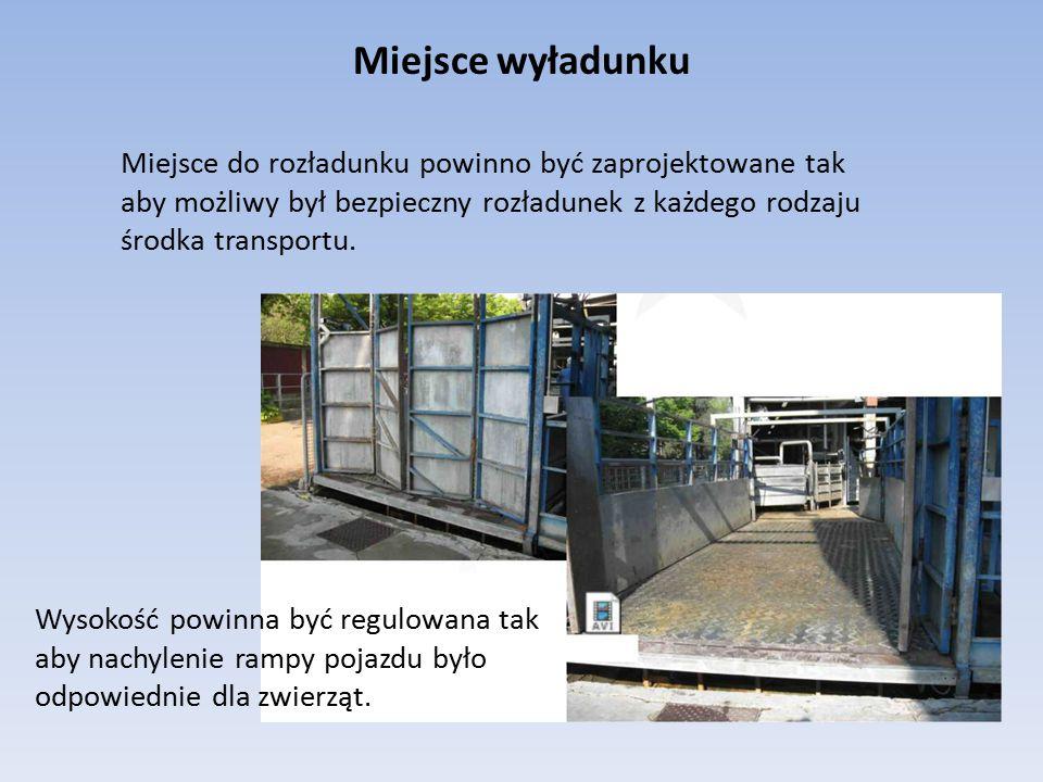 Rozładunek i przetrzymywanie zwierząt w kontenerach Kontenery powinny być: utrzymywane w dobrym stanie, obsługiwane ostrożnie ładowane i wyładowywane mechanicznie w pozycji horyzontalnej.