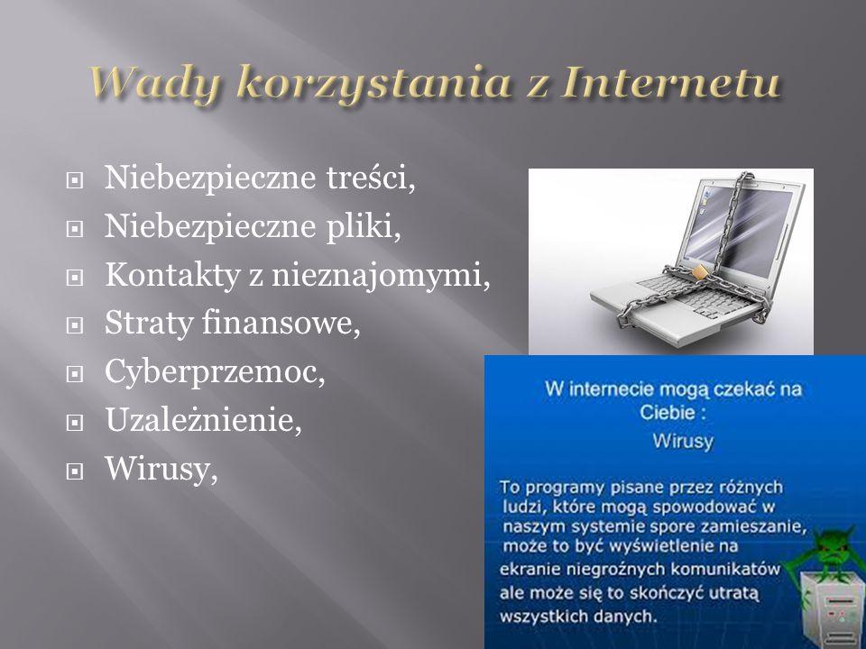  Niebezpieczne treści,  Niebezpieczne pliki,  Kontakty z nieznajomymi,  Straty finansowe,  Cyberprzemoc,  Uzależnienie,  Wirusy,