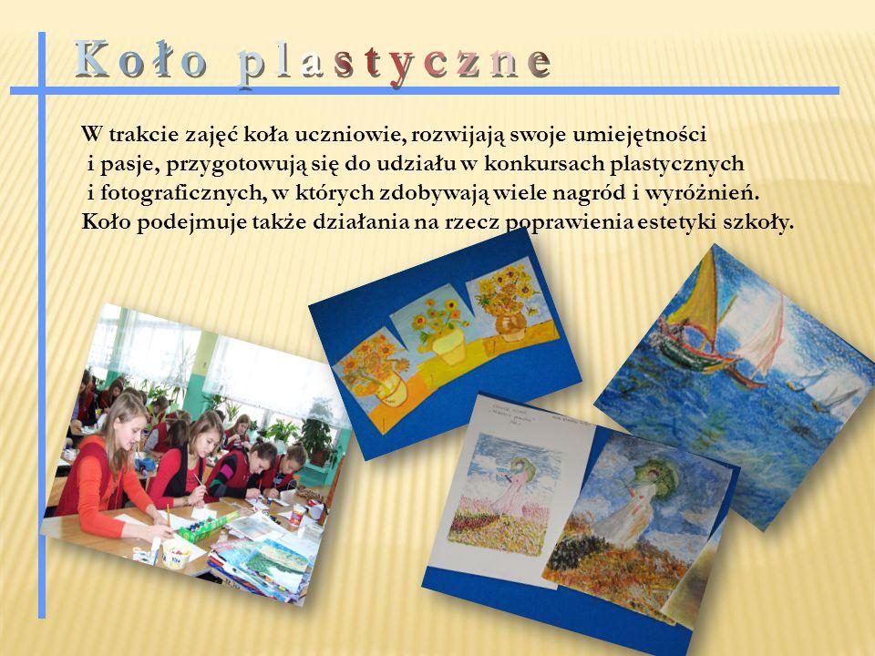 W trakcie zajęć koła uczniowie, rozwijają swoje umiejętności i pasje, przygotowują się do udziału w konkursach plastycznych i fotograficznych, w których zdobywają wiele nagród i wyróżnień.