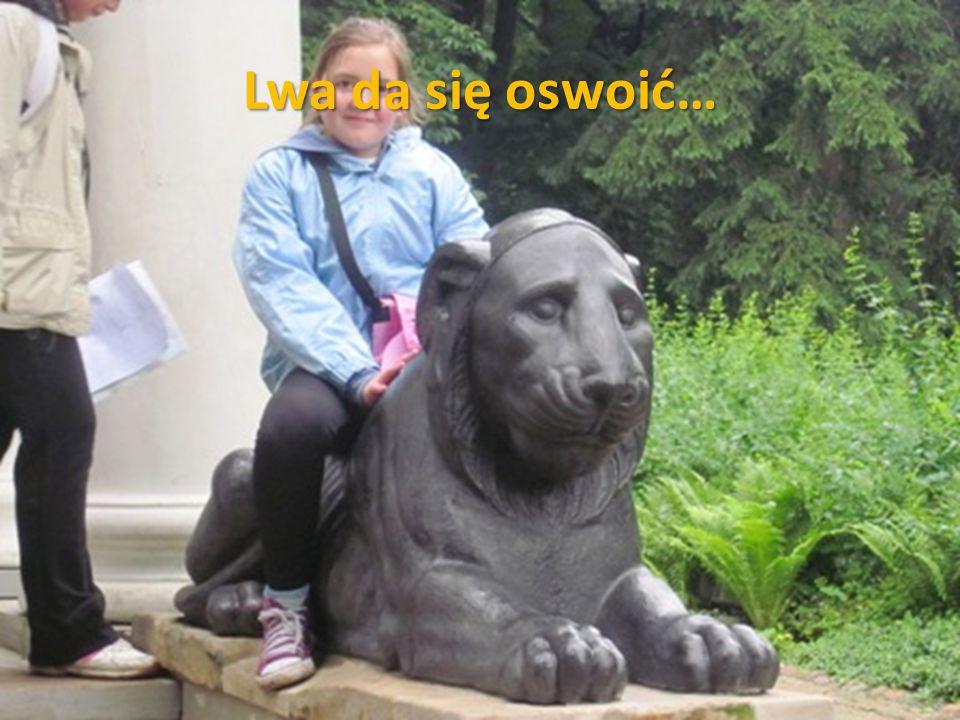 Lwa da się oswoić…
