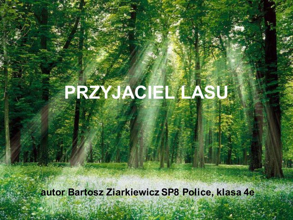 PRZYJACIEL LASU autor Bartosz Ziarkiewicz SP8 Police, klasa 4e