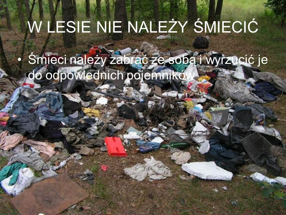 W LESIE NIE NALEŻY ŚMIECIĆ Śmieci należy zabrać ze sobą i wyrzucić je do odpowiednich pojemników
