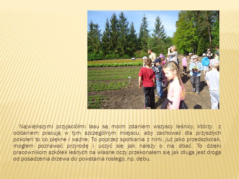 Jestem uczniem szóstej klasy, mieszkam w Nidzicy – miejscowości położonej na Mazurach, otoczonej pięknymi lasami.