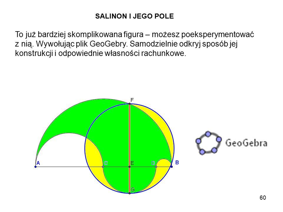 60 SALINON I JEGO POLE To już bardziej skomplikowana figura – możesz poeksperymentować z nią.