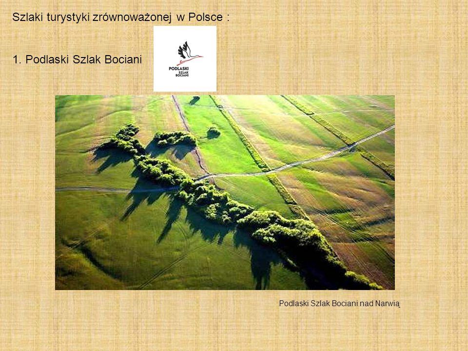 Szlaki turystyki zrównoważonej w Polsce : 1. Podlaski Szlak Bociani Podlaski Szlak Bociani nad Narwią