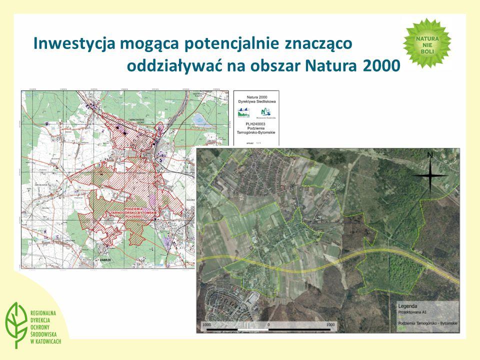 Inwestycja mogąca potencjalnie znacząco oddziaływać na obszar Natura 2000