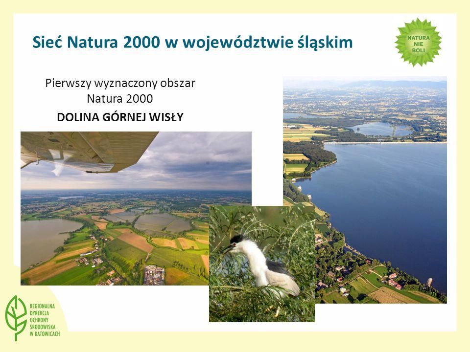 Sieć Natura 2000 w województwie śląskim Pierwszy wyznaczony obszar Natura 2000 DOLINA GÓRNEJ WISŁY