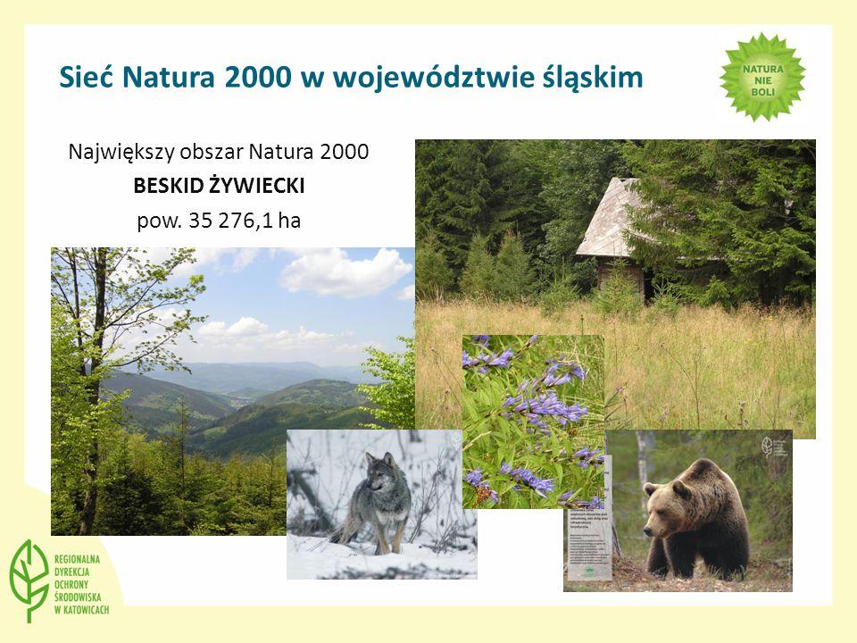 Sieć Natura 2000 w województwie śląskim Największy obszar Natura 2000 BESKID ŻYWIECKI pow. 35 276,1 ha