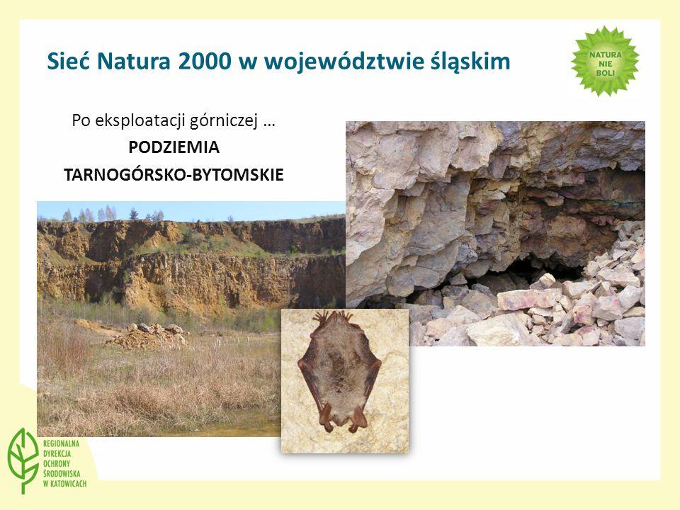 Sieć Natura 2000 w województwie śląskim Po eksploatacji górniczej … PODZIEMIA TARNOGÓRSKO-BYTOMSKIE
