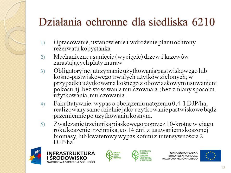 Działania ochronne dla siedliska 6210 1) Opracowanie, ustanowienie i wdrożenie planu ochrony rezerwatu kopystanka 2) Mechaniczne usunięcie (wycięcie)