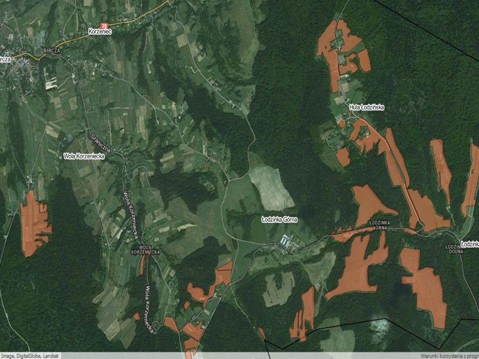 6510 Niżowe i górskie świeże łąki użytkowe ekstensywnie (Arrhenatherion elatioris) 14
