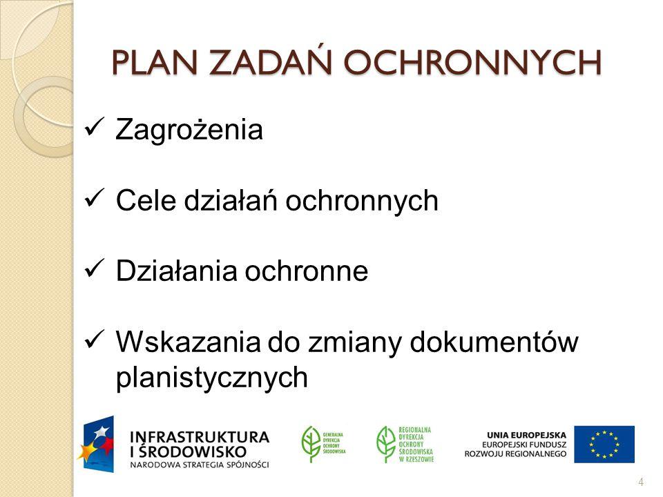 PLAN ZADAŃ OCHRONNYCH 4 Zagrożenia Cele działań ochronnych Działania ochronne Wskazania do zmiany dokumentów planistycznych