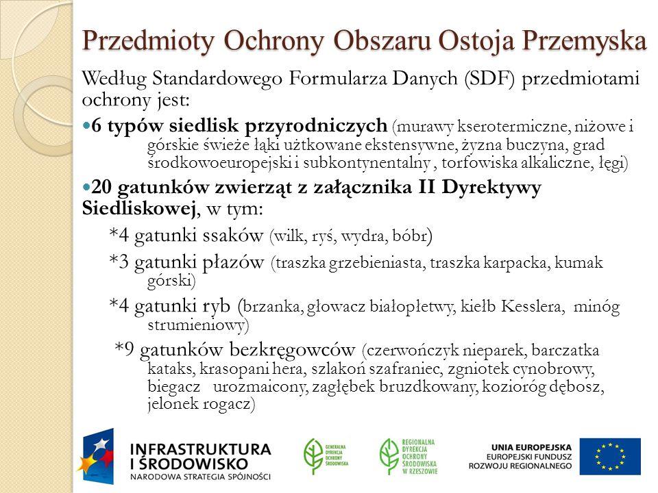 Przedmioty Ochrony Obszaru Ostoja Przemyska Według Standardowego Formularza Danych (SDF) przedmiotami ochrony jest: 6 typów siedlisk przyrodniczych (m