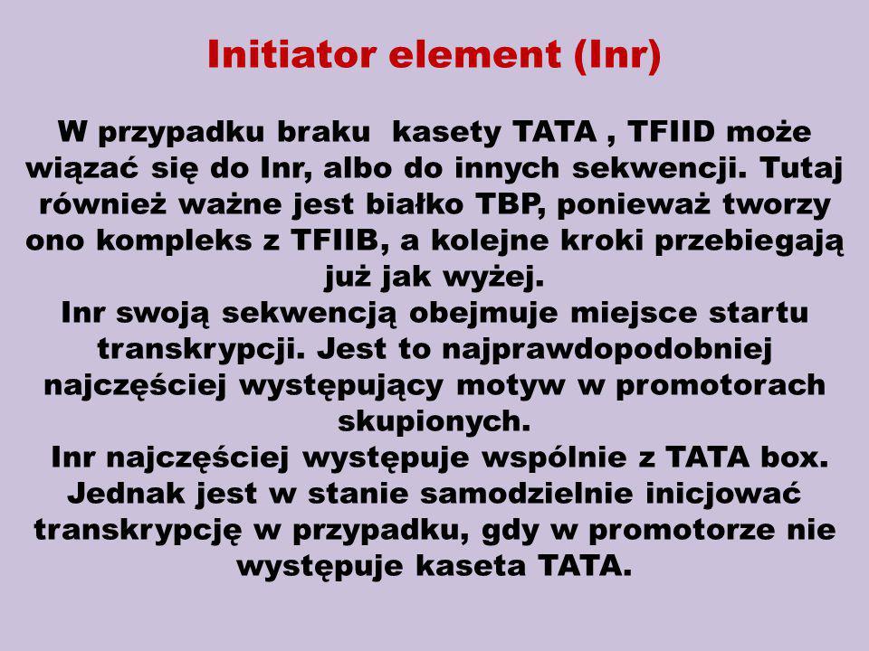 Initiator element (Inr) W przypadku braku kasety TATA, TFIID może wiązać się do Inr, albo do innych sekwencji. Tutaj również ważne jest białko TBP, po