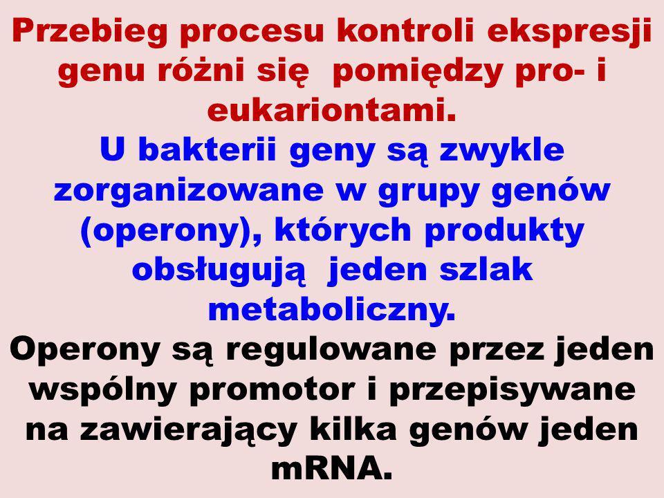 Przebieg procesu kontroli ekspresji genu różni się pomiędzy pro- i eukariontami. U bakterii geny są zwykle zorganizowane w grupy genów (operony), któr