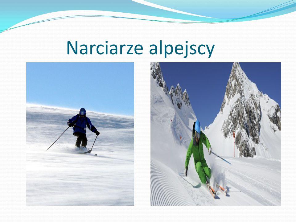 Narciarze alpejscy