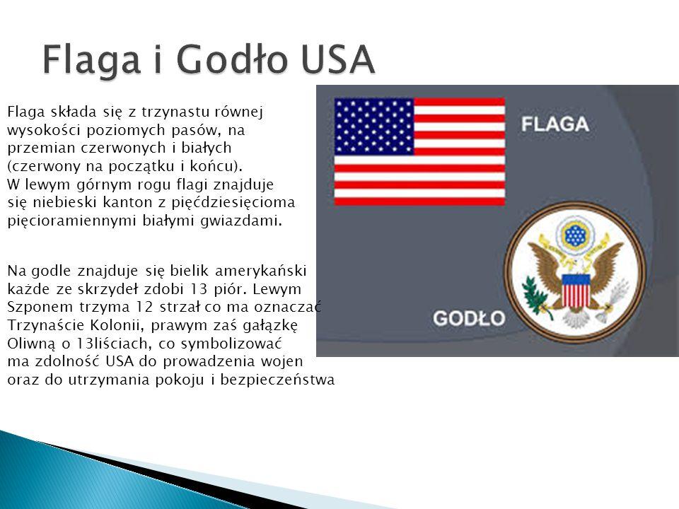 Flaga składa się z trzynastu równej wysokości poziomych pasów, na przemian czerwonych i białych (czerwony na początku i końcu).