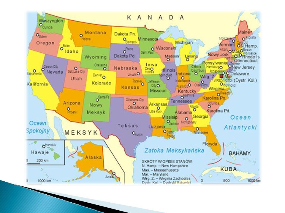  W Stanach zjednoczonych co piąte dziecko cierpi na otyłość.