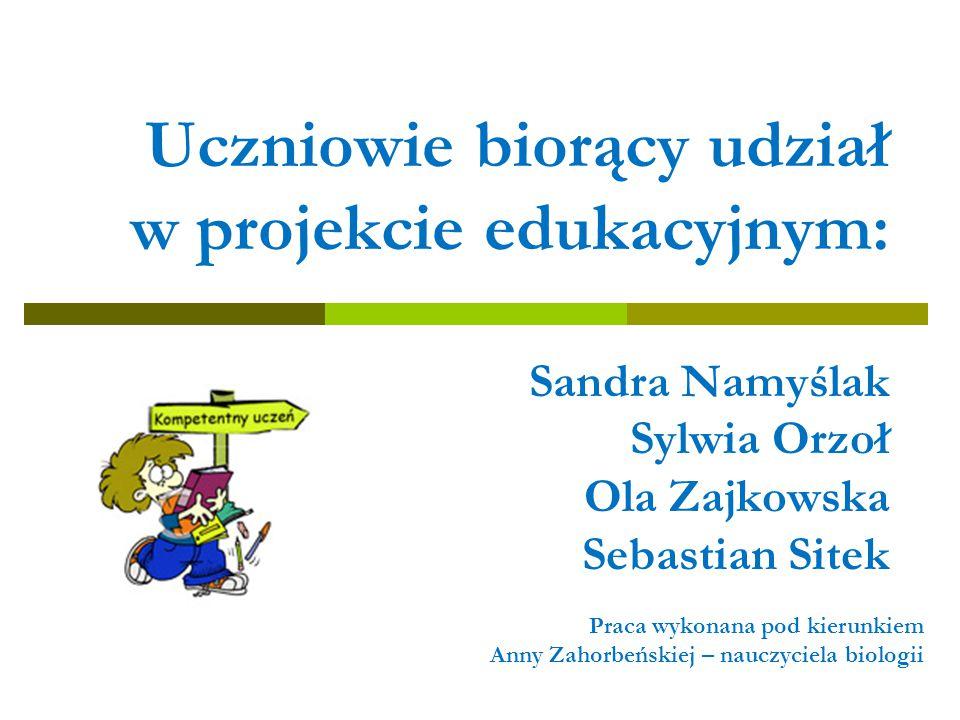 Uczniowie biorący udział w projekcie edukacyjnym: Sandra Namyślak Sylwia Orzoł Ola Zajkowska Sebastian Sitek Praca wykonana pod kierunkiem Anny Zahorb