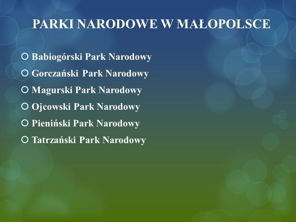 PARKI NARODOWE W MAŁOPOLSCE  Babiogórski Park Narodowy  Gorczański Park Narodowy  Magurski Park Narodowy  Ojcowski Park Narodowy  Pieniński Park Narodowy  Tatrzański Park Narodowy