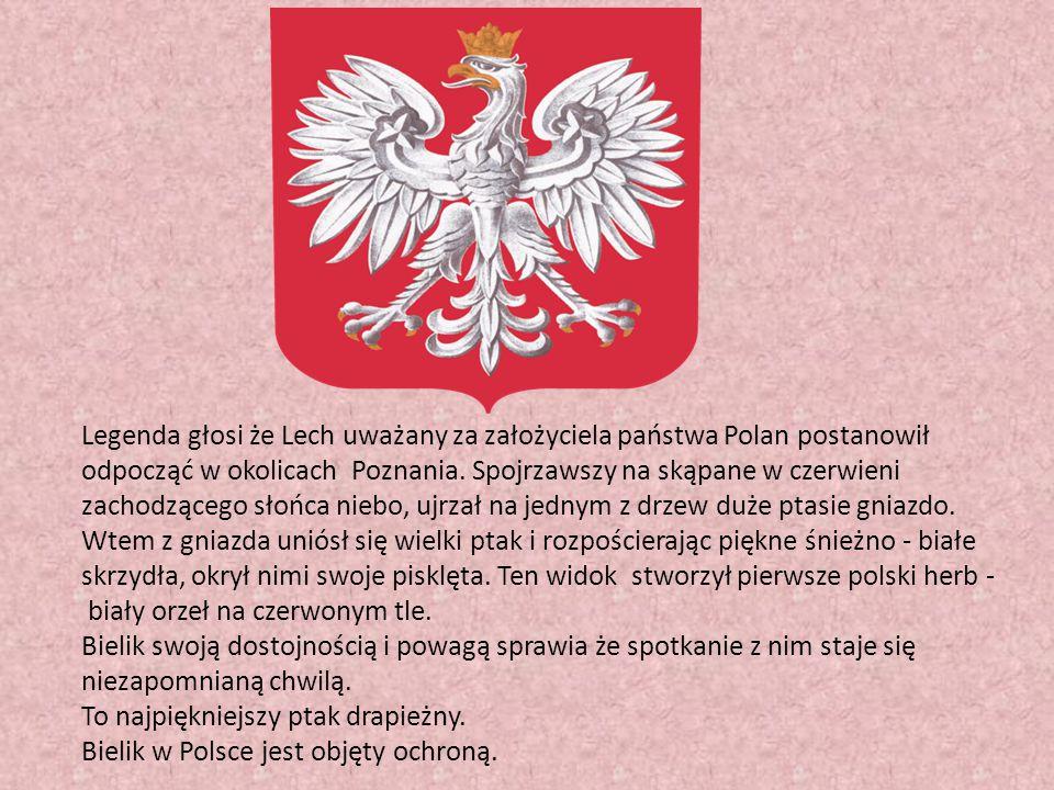 Legenda głosi że Lech uważany za założyciela państwa Polan postanowił odpocząć w okolicach Poznania. Spojrzawszy na skąpane w czerwieni zachodzącego s