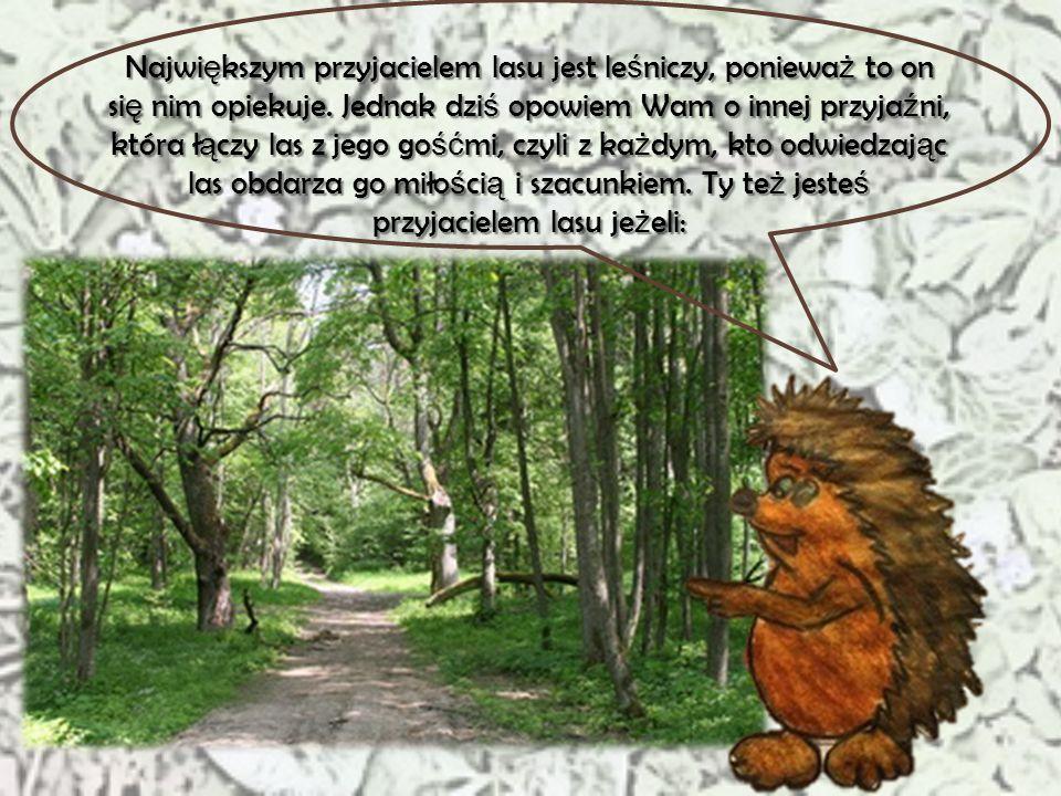 """""""Kto jest przyjacielem lasu?"""" Zuzanna Makacewicz Klasa 6 f S. P. nr 341 Cze ść"""