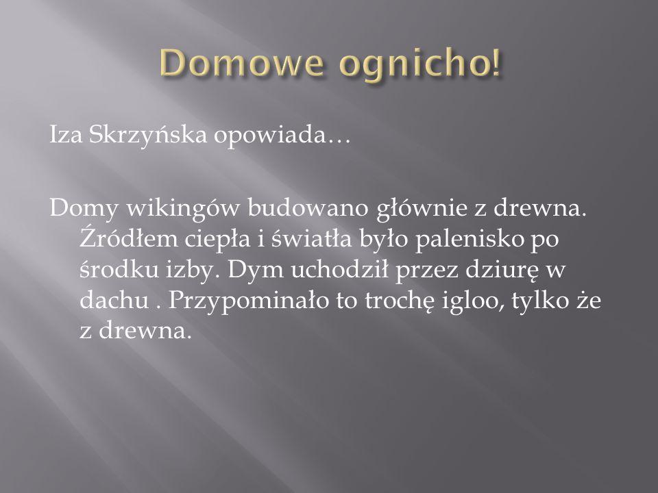 Iza Skrzyńska opowiada… Domy wikingów budowano głównie z drewna.
