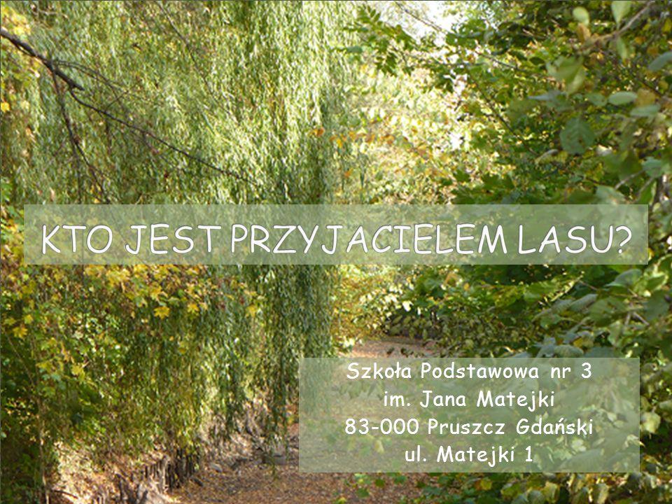 Szkoła Podstawowa nr 3 im. Jana Matejki 83-000 Pruszcz Gdański ul. Matejki 1